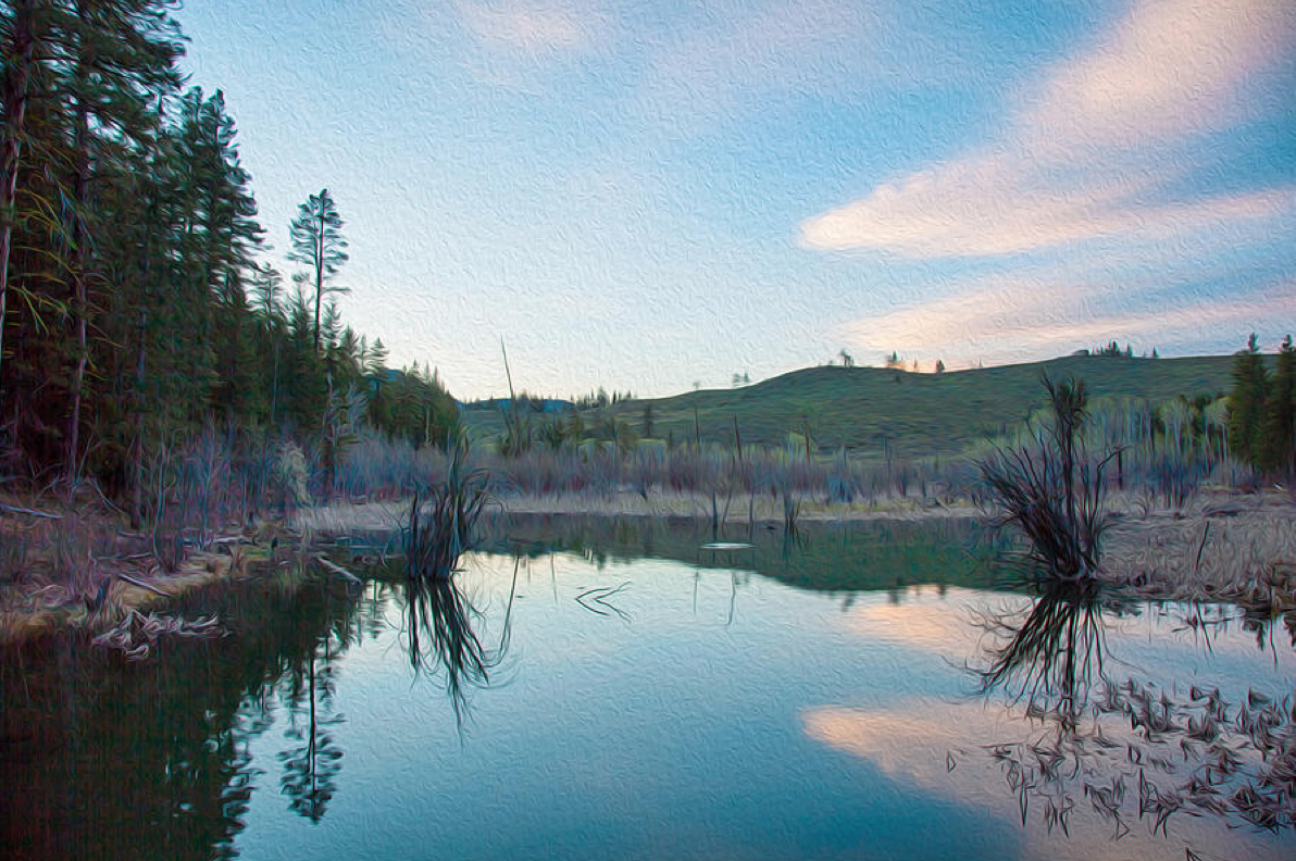 Early Sunset on a Beaver Pond