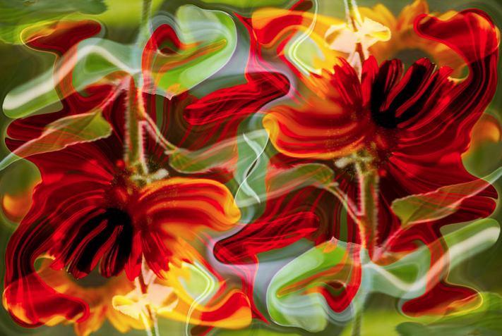 Dancing Flowers Abstract Photoshop Artwork by Omashte