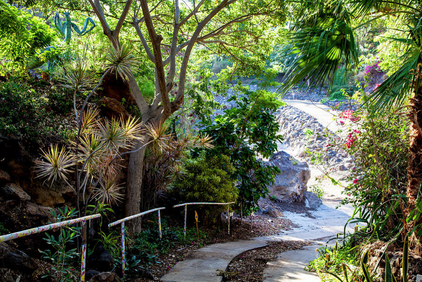 Pua Mau Path Hawaii Landscape Photography by Omashte