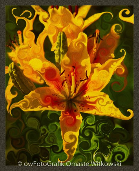 Abstract Yellow Lily Omaste Witkowski owfotografik.com