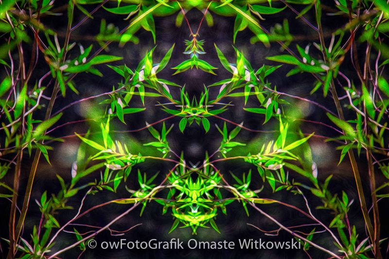 Spiritual Intoxication Abstract Motivational Artwork by Omashte