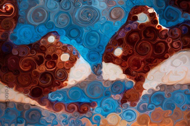 Will You Be My Beaver Omaste Witkowski owFotoGrafik.com
