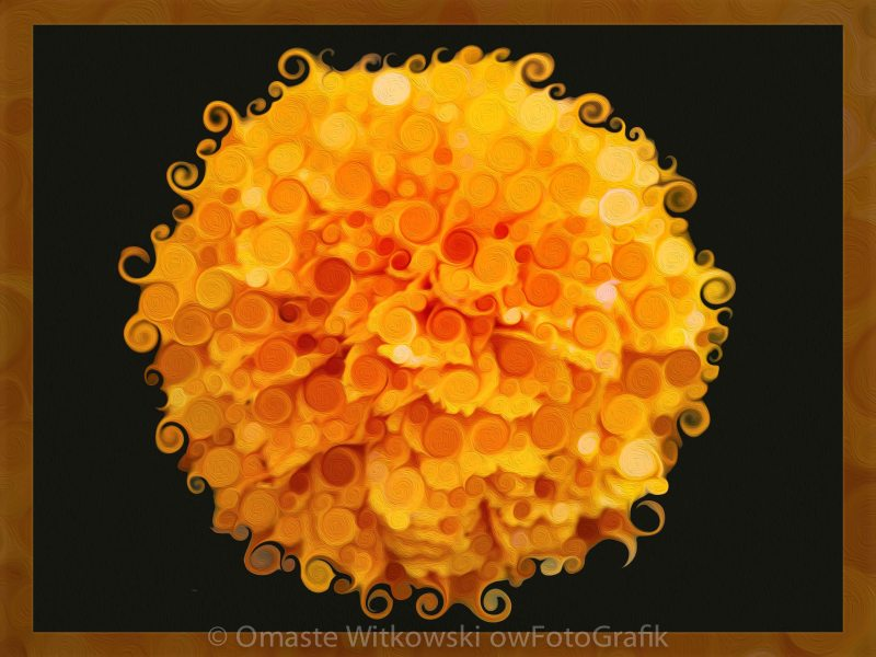 Marigold Magic Abstract Flower Art Omaste Witkowski owFotoGrafik.com