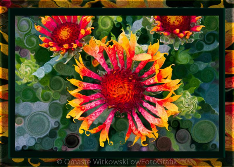 Passionate Pinwheels and Blooming Abstract Flower Art Omaste Witkowski owFotoGrafik.com