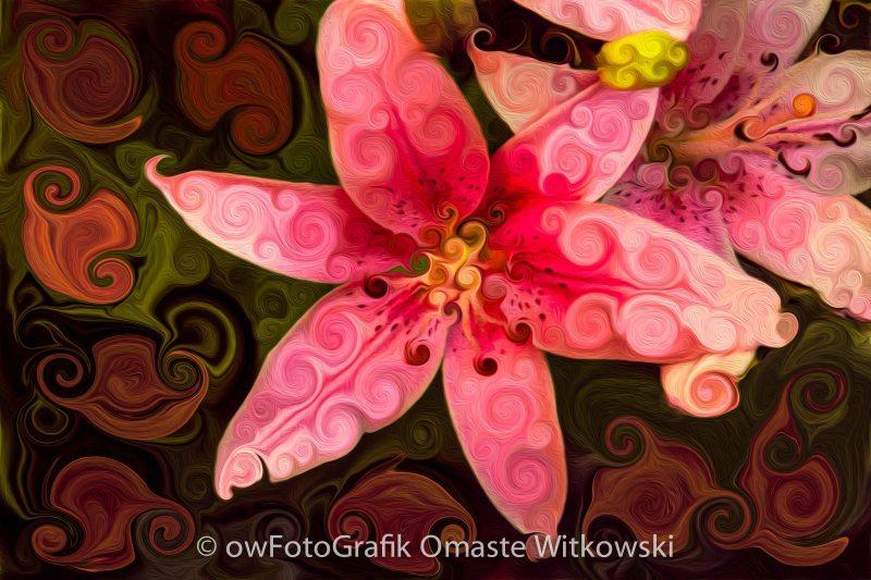 Pretty in Pink Omaste Witkowski owfotografik.com