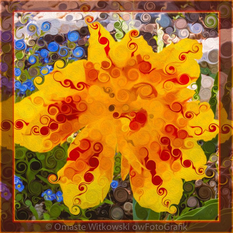 Red & Yellow Lily in the Garden Abstract Flower Art Omaste Witkowski owFotoGrafik.com