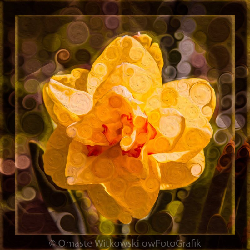 Yellow Daffodil in an Abstract Garden Painting Omaste Witkowski owFotoGrafik.com