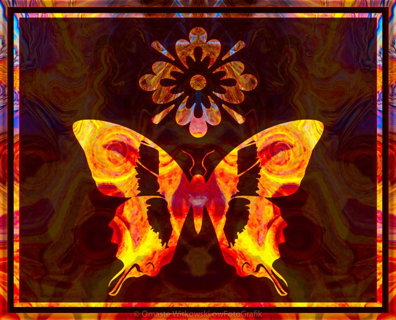 Butterfly By Design Abstract Symbols Artwork Omaste Witkowski owFotoGrafik.com