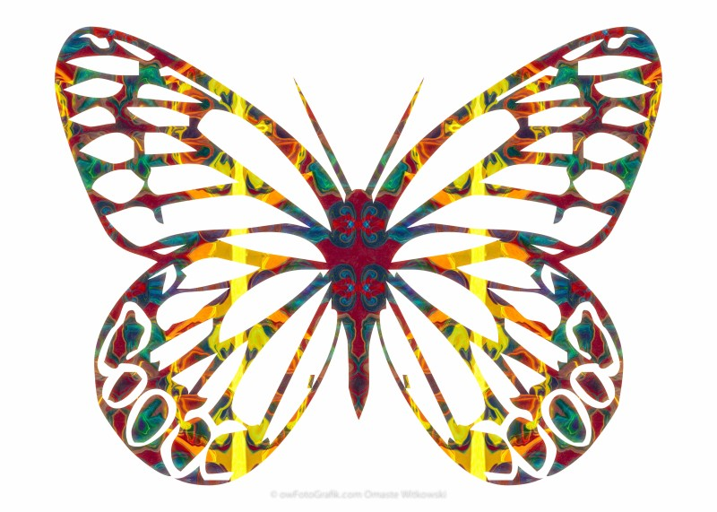 Cosmic Butterfly Abstract Pattern Artwork