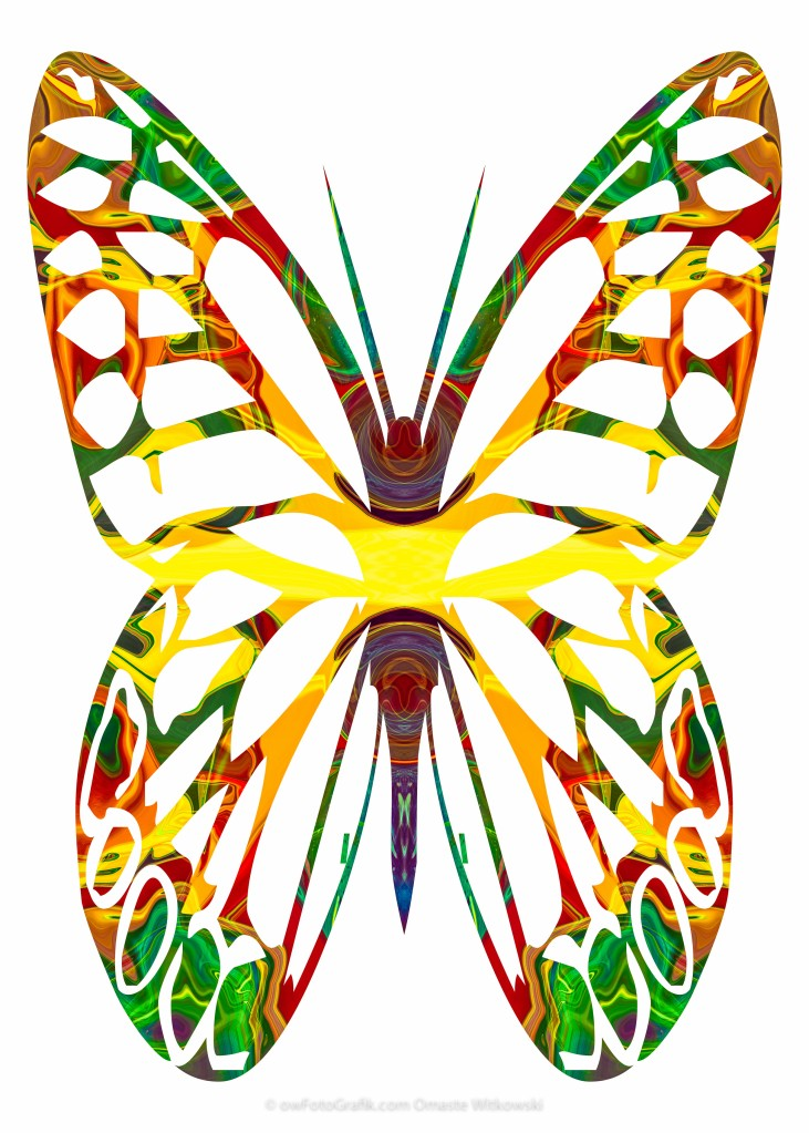 Rainbow Butterfly Abstract Nature Artwork
